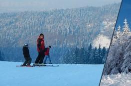Myślenice Atrakcja Szkoła narciarska Sport Arena